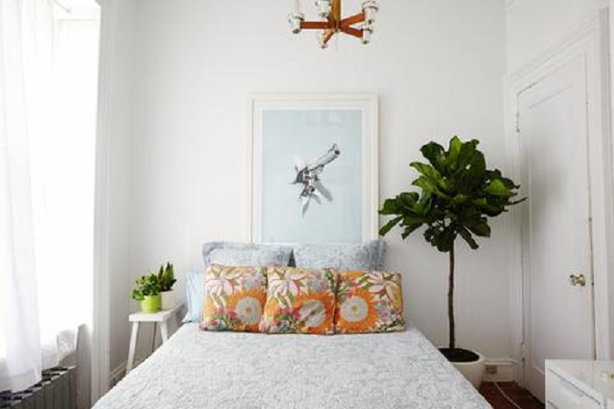 Pros and Cons of Keeping Plants In The Bedroom