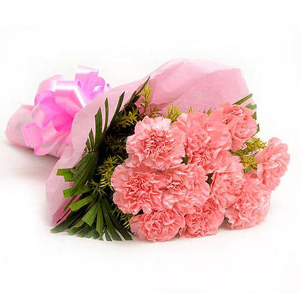 Pretty Pink Carnations Bouquet