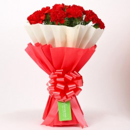 12 Red Carnations Bouquet in Red & White Paper
