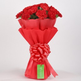 12 Red Carnations Bouquet in Red Paper