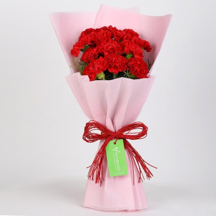 12 Red Carnations Bouquet in Pink Paper