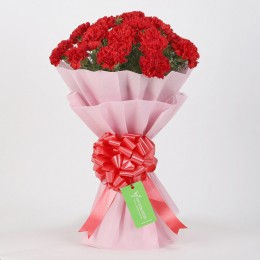 20 Red Carnations Bouquet in Pink Paper