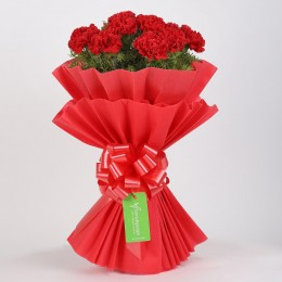 Vibrant 20 Red Carnations Bouquet