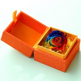 Rainbow Rose for Valentine Day
