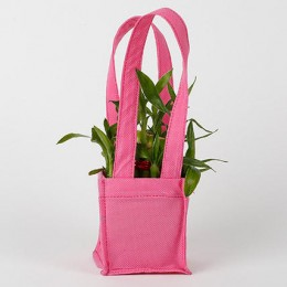 Carry Lucky Bamboo In Style