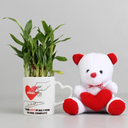 2 Layer Lucky Bamboo Plant with Teddy Bear Combo