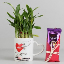 2 Layer Lucky Bamboo Plant with Dairy Milk Silk Chocolates