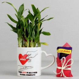 2 Layer Lucky Bamboo Plant with Cadbury Dairy Milk