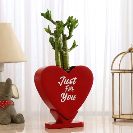 Cut Leaf Bamboo In Heart Shaped Pot