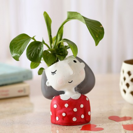 Money Plant In Winking Girl Raisin Pot