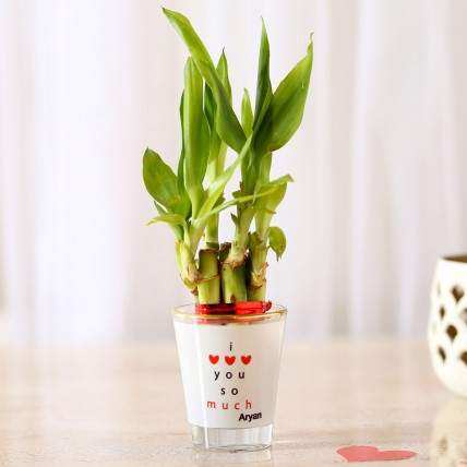 Lucky Bamboo In I Love Your Glass Vase