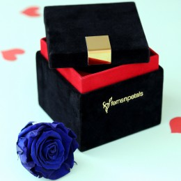 Royal- Forever Blue Rose in Velvet Box