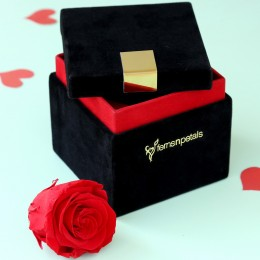 Timeless- Forever Red Rose in Velvet Box