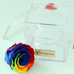 Mystic- Forever Rainbow Rose in Acrylic Box