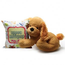 Birthday Cushion and Soft Toy