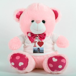 Red N Pink Personalized Teddy Bear