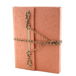 TARAgram Peach Colored Bamboo Stick Diary