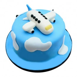 Cute Airplane Cake 3kg