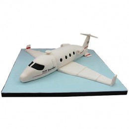 White Airplane Cake 2kg