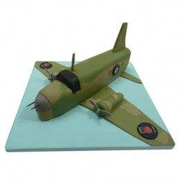 Green Airplane Cake 2kg