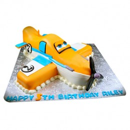 Animated Airplane Cake 2kg