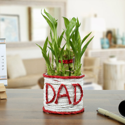 A Lucky Gift For Father