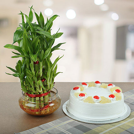 Pineapple Cake With Three Layer Bamboo Plant