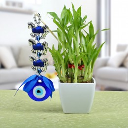Evil Eye N Lucky Bamboo