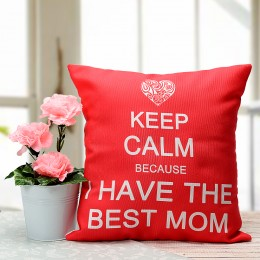 Mothers Day Best Mom Cushion & Plant