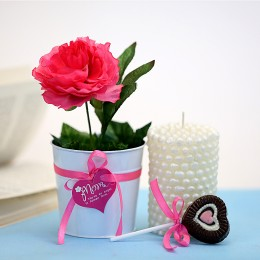 Mothers Day Special Mom Special Gifts
