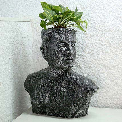 Money Plant in Designer Pot