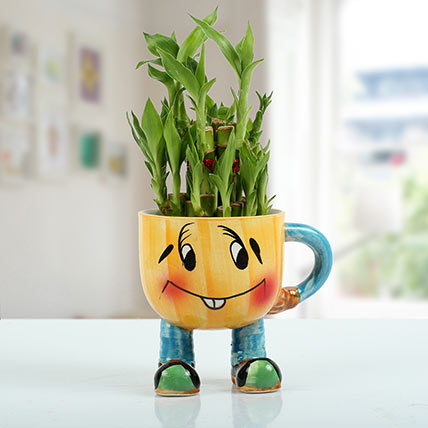 Two Layer Bamboo Plant With Smiley Vase