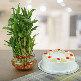 Three Layer Bamboo With Eggless Pineapple Cake