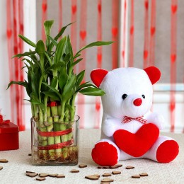 Two Layer Bamboo Plant & Red Heart Teddy Bear Combo