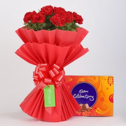 12 Vibrant Red Carnations & Cadbury Celebrations
