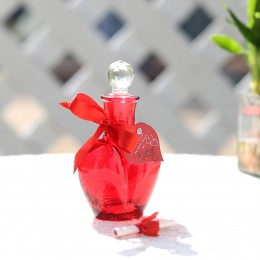 Rose Day Message in a Red Bottle