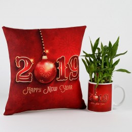 New Year Special Two Layer Bamboo Plant Combo