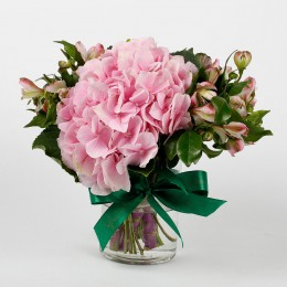 Imported Light Pink Hydrangea Flowers in Glass Vase