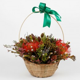 Red Yellow Pincushion Flowers in Basket