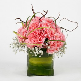 15 Pink Carnations Flower Arrangement in Vase