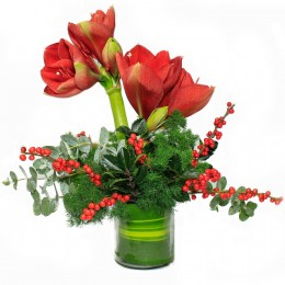 Red Amaryllis Arrangement in Glass Vase