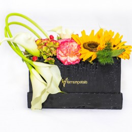 Carnations Sunflower Box Arrangement