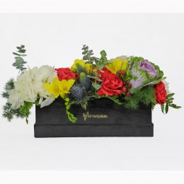 Carnations Freesia Box Arrangement