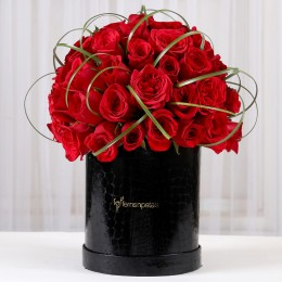 Velvety Love 65 Red Roses in Black Box