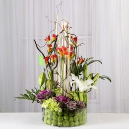 White Oriental Lilies & Red Freesia Arrangement