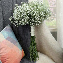 Gypsophila Flower Bunch