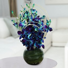 Blue Orchids Arrangement
