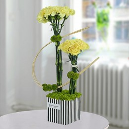 Yellow Carnations Arrangement