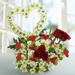 Peace White Daisy Arrangement