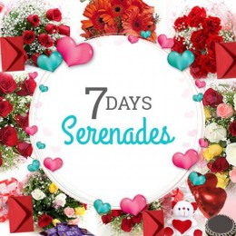 7 Days Valentine Week full of Love